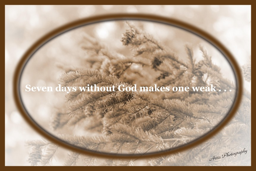 Seven Days Without God